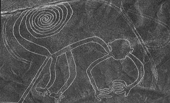 ナスカの地上絵の画像 p1_8